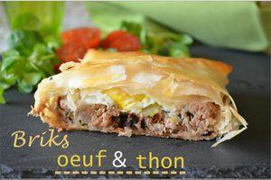 Brick à l'œuf et au thon