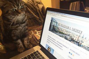 Eh oui, même les animaux ont leur place sur ce blog ;)
