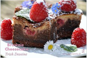 Brownie Cheesecake aux Framboises selon Trish Deseine