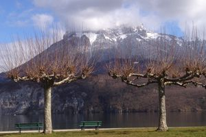 LAC d'ANNECY:   Rive ouest