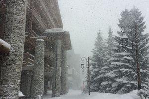Very snowy day...