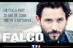 Audiences Tv du 29/05/14: Large domination de Falco. Fr3 se défend. Fr2 déçoit. M6 faible. TMC 5e.