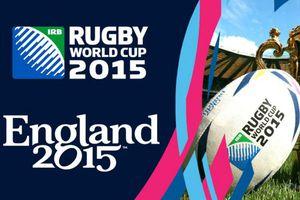 TF1 va revendre une partie des matchs de la Coupe du monde de rugby à Canal +