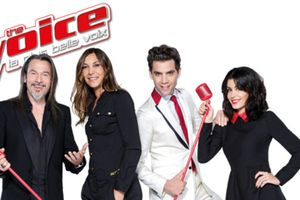 Audiences Tv du 24/01/15: Large domination de The Voice. Fr2 & Fr3 résistent. NCIS LA faible. Arte 5e.