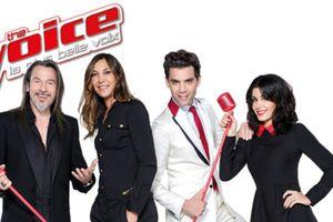 """Les vidéos des prestations de l'épisode 6 des auditions de à l'aveugle de la saison 6 de """"The Voice"""""""