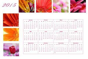 Calendrier annuel fleurs