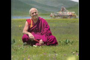 Qu'est-ce que la méditation ? Matthieu Ricard