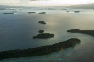 اليوم الدولي للتنوع البيولوجي الجزري