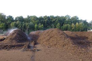 Exposé sur le compostage au forum des associations