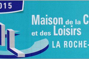 2 au 10 MAI 2015: 26ème SALON DES ARTISTES AMATEURS DE LA ROCHE-POSAY
