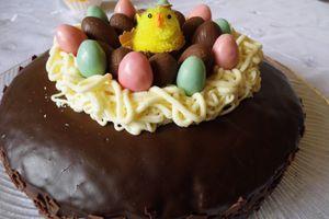"Gâteau au chocolat ""nid de Pâques"""