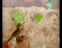 Activité sensorielle : recette sable de lune. éveil