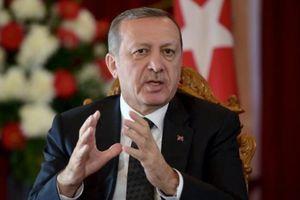 Erdogan est vraiment un « séparatiste nationaliste intégriste totalitaire moderne » !