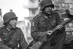 Ils étaient nazis et français