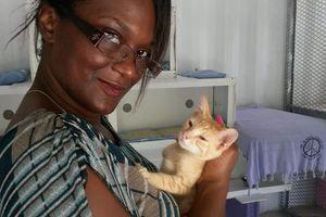 GUIZMO - chaton mâle - 2 mois - le 150 ème adopté, c'est lui