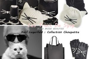 Collection « Fancy Feline » by Karl Lagerfeld !