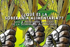 Soberanía alimentaria: La capacidad de decidir sobre la salud de nuestra gente...