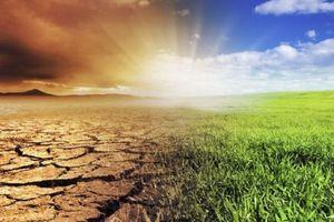 Recursos naturales: sólo el 0,5% del presupuesto se usará en el área de ambiente