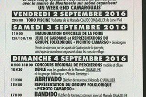 Foire Aux chevaux de Montmerle sur Saône 2016