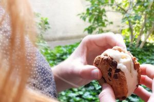 Ice cream cookie sandwich, la tendance de l'été ! (vegan)