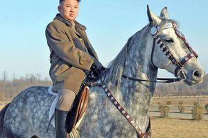 Kim Jong Un au lancement d'essai d'un missile tactique téléguidé de haute précision