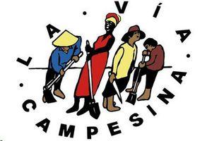 Via Campesina : Le pouvoir des multinationales et leur impunité étouffent la voix des peuples