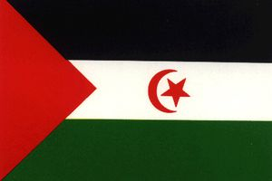 Les Sahraouis ont perdu patience et sont prêts à riposter à toute attaque