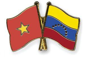 Le Vice-PM Pham Binh Minh rencontre des dirigeants étrangers en marge du 17e Sommet du MNA