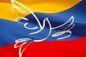 Un sénateur colombien donne pour sûre la fin de la guerre avec les FARC-AP