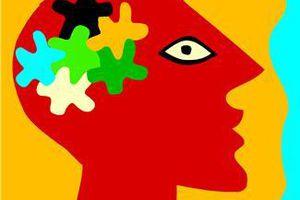 Intelligence visuelle et spatiale chez Mimi