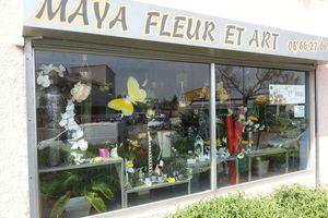 Maya Fleur passionnée et créative