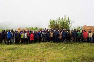RDC : les FDLR se déclarent disposés à se rendre à Kisangani pour y être cantonnés