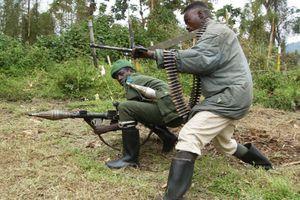 Rwanda : Ingabo za FDLR muri Kivu y'amajyepfo zafashe icyemezo cyo kwiyunga n'umutwe mushya wa politiki wa CNRD-UBWIYUNGE.