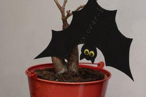 Chauve-souris d'Halloween