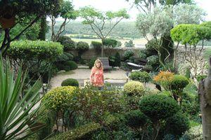 Jardin des buis de Lussan