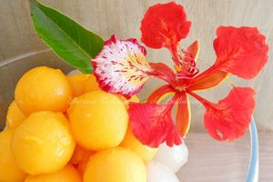 Litchi & Billes de Mangue