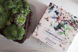 Crash test: Botanical beauty box: Pigments des bois, la box beauté de chez Yves Rocher
