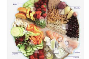 assiette équilibrée weight watchers
