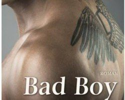 Bad Boy de Helena Hunting (2 Tomes).