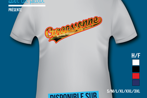 T-shirt: France - Languedoc-Roussillon - Carcassonne.