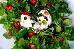 Burrata, fraises et estragon en salade - recette très rapide