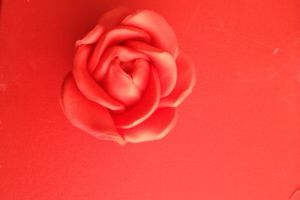 Tuto roses en pâte à sucre