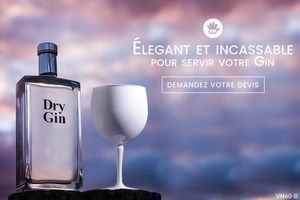 Tendance cocktail 2017 : Le Gin