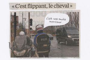 """""""C'est flippant, le cheval"""""""