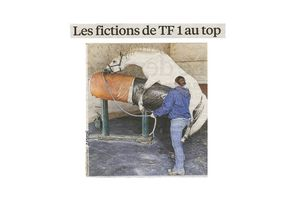 Les fictions de tf1 au top