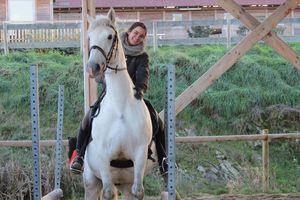 Après-midi initiation à l'équitation de travail