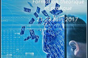 Formation théorique et pratique sur l'utilisation de la Réalité Virtuelle en Sciences du Cerveau - 21-23 juin 2017