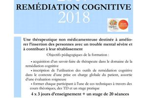 D.U. Remédiation Cognitive 2017 - 2018