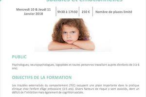 Formation - Evaluation et prise en charge des comportements difficiles chez le jeune enfant - 10-11 janvier 2018