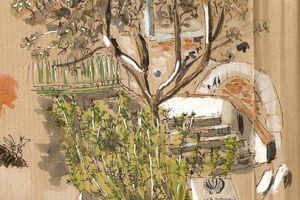 Jardins secrets... 11 § Le jardin de St Jacques